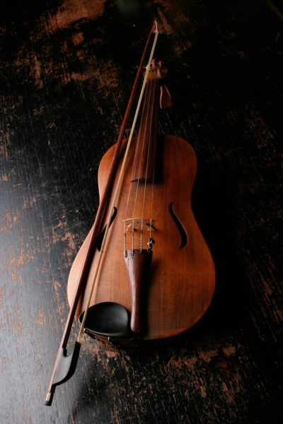Photo of a violin for students